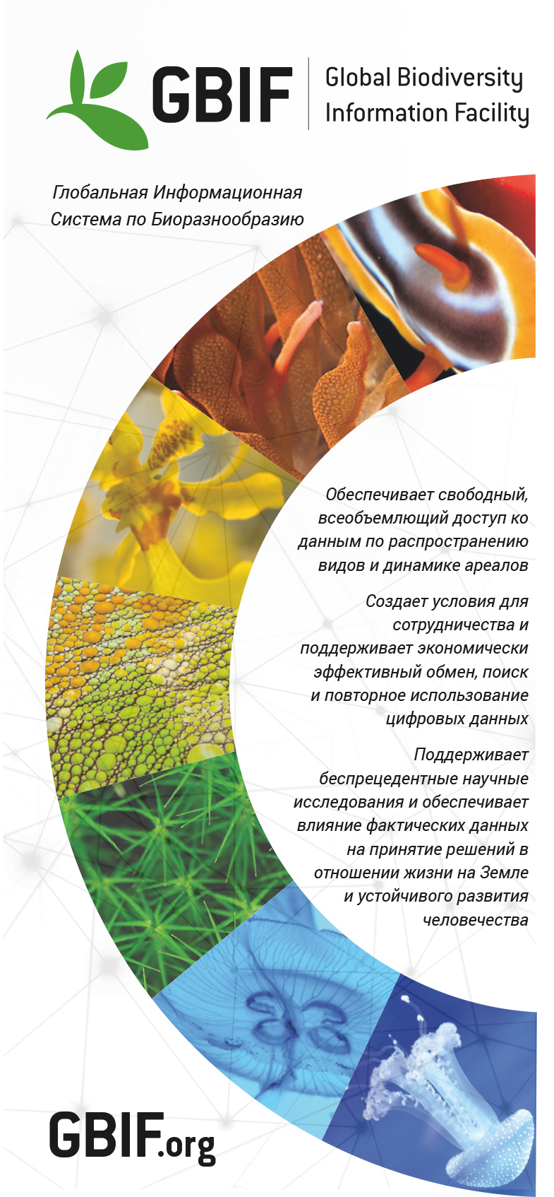 GBIF brochure, 2016 edition - Russian