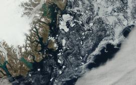 Sea ice off the east coast of Greenland