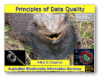 Presentation: Principles of Data Quality